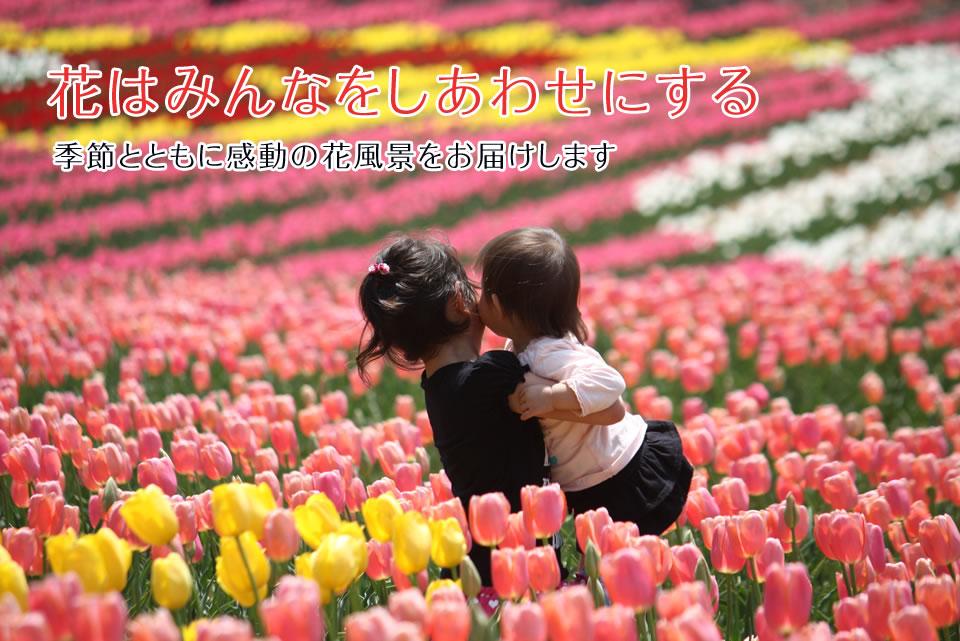 花はみんなをしあわせにする 季節とともに感動の花風景をお届けいたします。