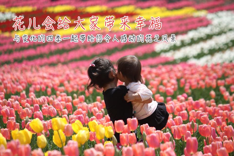 花儿会给大家带来幸福 与变化的四季一起带给您令人感动的花之风景