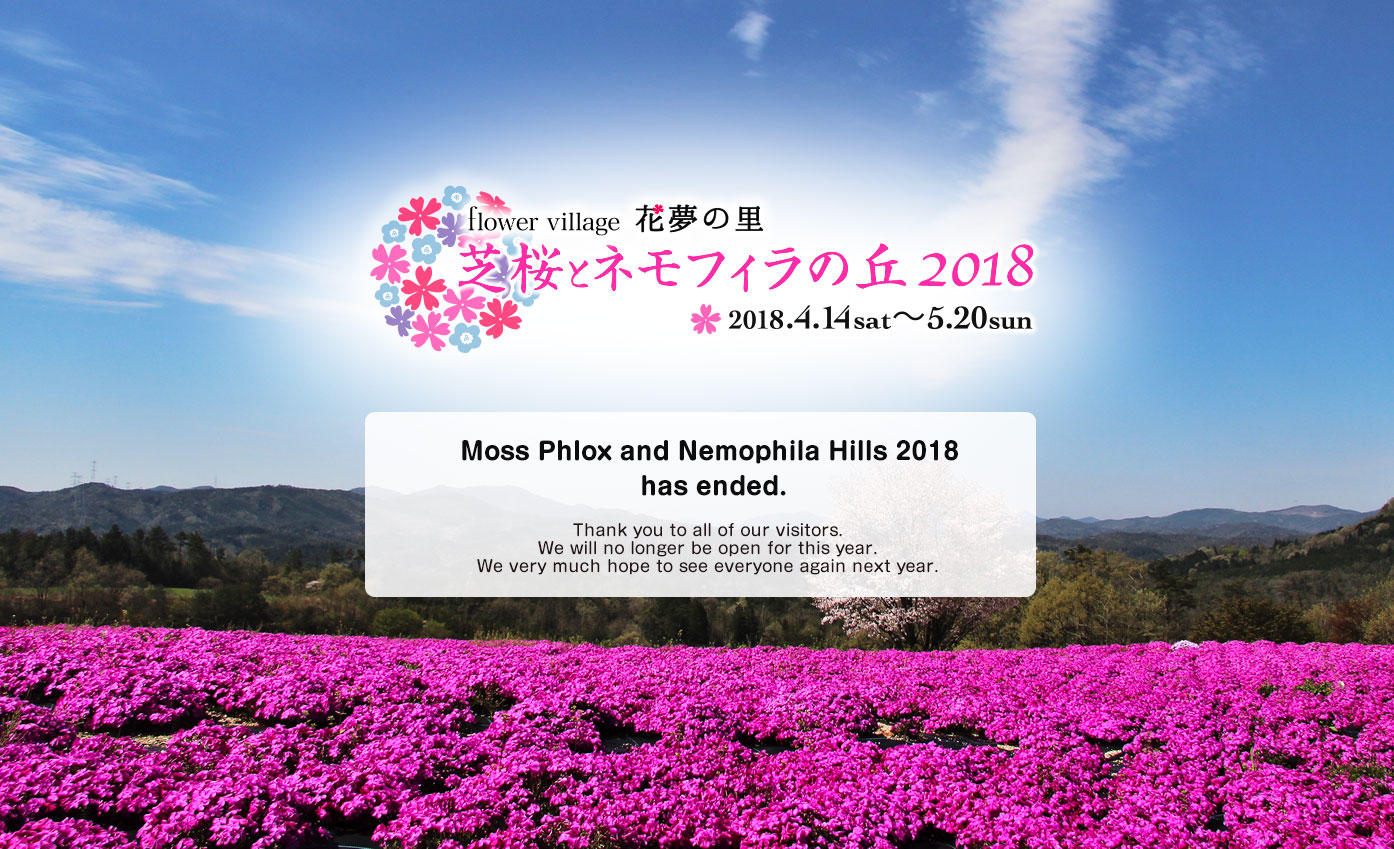 Shiba Sakura and Nemophila no Hill 2017 has ended. Thank you very much for your visiting.