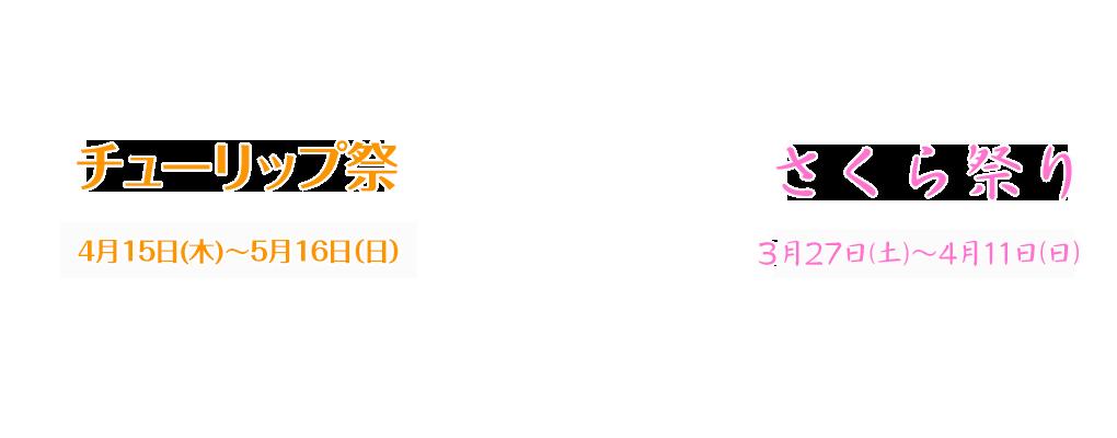 2016世羅高原農場 ひまわりまつり 7月30日(土)〜8月21日