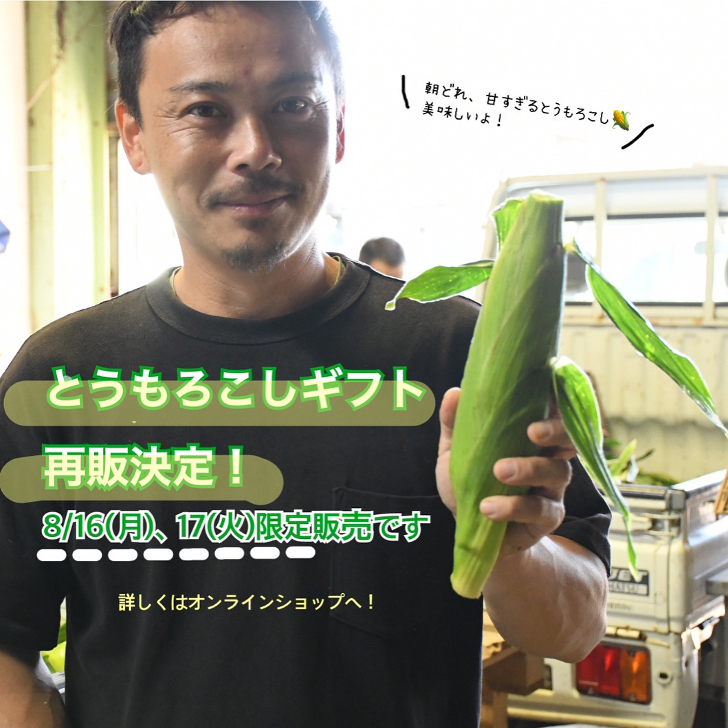 朝採りとうもろこしオンライン再販のお知らせ【8月16日、17日限定】