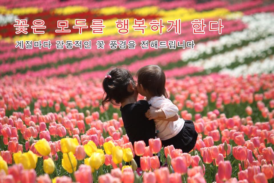 꽃은 모두를 행복하게 한다 계절마다 감동적인 꽃 풍경을 전해드립니다